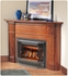 Picture of Napoleon BGD33NR DV Fireplace (Rear Vent)