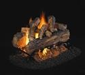 Picture of Split Oak Designer Plus See Thru Vented Log Set